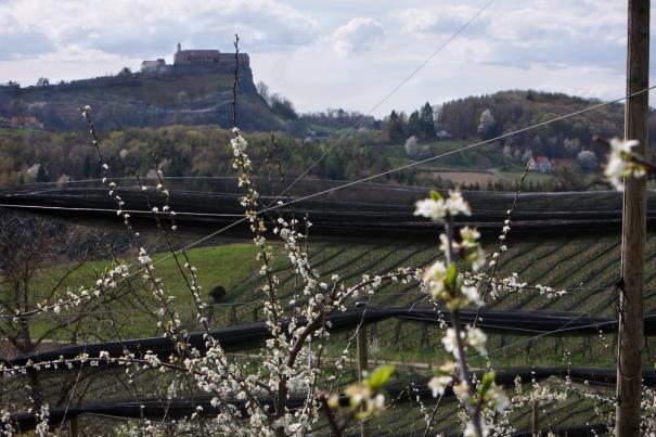 Gölles-Riegersburg slott