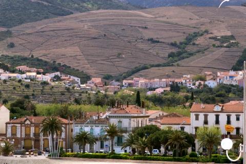 Banyuls ligger bara 9 km norr om den spanska gränsen
