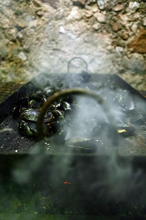 Brassoucade