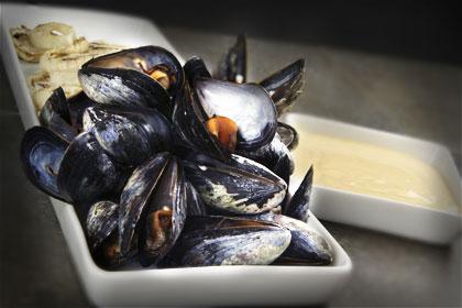 Rökta musslor med citrusaioli och grillad fänkål